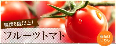 糖度8度以上!フルーツトマト まるでフルーツのように糖度が高く甘いフルーツトマト!
