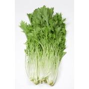 サラダ水菜 1袋/200g